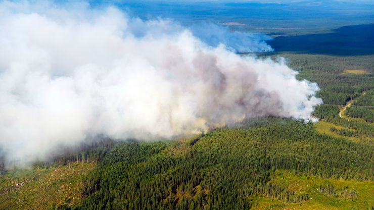 Massive Arctic wildfires emitted more CO2 in June than Sweden does in an entire year