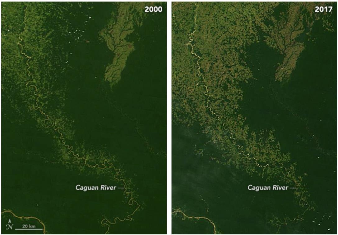 Making Sense of Amazon Deforestation Patterns