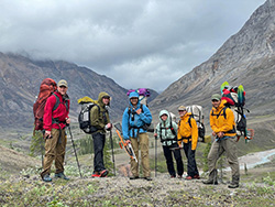 Notes from the Field: Unraveling the Mysteries of Arctic Greening and Browning